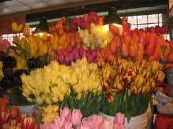 You can buy all sorts of flowers at Pike Place