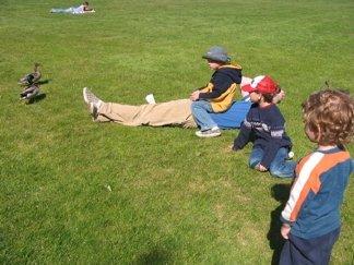 Relaxing in Bellevue City Park
