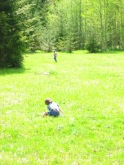 Playing in the Washington Peninsula
